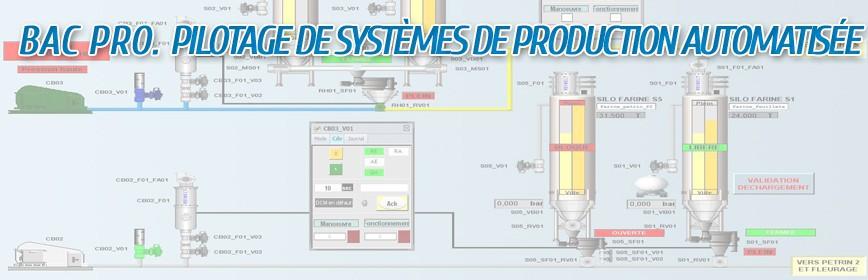 Bac Pro PSPA